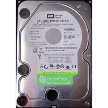 Б/У жёсткий диск 500Gb Western Digital WD5000AVVS (WD AV-GP 500 GB) 5400 rpm SATA (Клин)