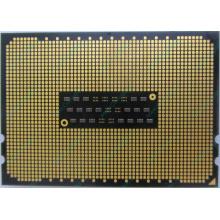 AMD Opteron 6128 OS6128WKT8EGO (Клин)